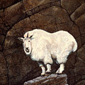 Mountain Goat by Frank Wilson
