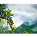 Mountain High - St. Lucia Parrots by Christopher Cox