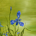 Mountain Iris by SheRok Williams