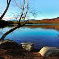 Mountain Lake Chocorua by Mim White