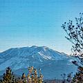 Mountain Majestic by Nancy Marie Ricketts
