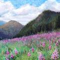 Mountain Meadow by Susan Jenkins