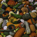 Mountain Of Squash by Garry Gay