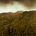 Mountain Of Trees by Jorgo Photography - Wall Art Gallery