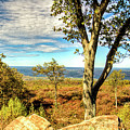 Mountain Overlook At High Point New Jersey by Geraldine Scull