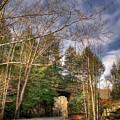 Mountain Pass by Douglas Barnett