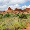 Mountain Peaks At Caprock  by Ruth  Housley