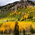 Mountain Side Autumn by Lana Trussell