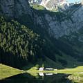 Mountain Sight by Jana Behr