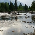 Mountain Stream by Bonnie Bruno