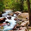 Mountain Stream by Dan Dooley