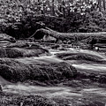 Mountain Stream II Bw by Christopher Holmes