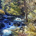Mountain Stream In Fall by Tommy Anderson