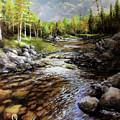 Mountain Stream by Jon Quinn