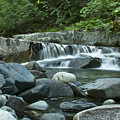 Mountain Stream by Idaho Scenic Images Linda Lantzy