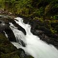 Mountain Stream by Mike Reid