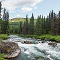 Mountain Stream by Paul Quinn