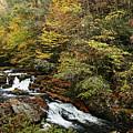 Mountain Stream by Rick Mann