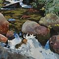 Mountain Stream by Robert Bissett