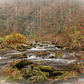 Mountain Stream With Vignette #2 by Tom Claud