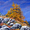 Mountain Tamaracks by Frank Wilson