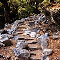 Mountain Trail by Alexander Fedin