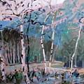 Mountain Trail by Brian Simons
