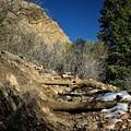 Mountain Trail by Buck Buchanan