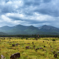 Mountain View After Rain by CEB Imagery