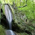 Mountain Waterfall Spring Nature Scene by Goce Risteski