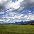 Mountainfarm by Mark Smith