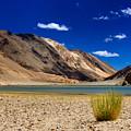 Mountains And Green Vegetation Chagor Tso - Lake Leh Ladakh Jammu Kashmir India by Rudra Narayan  Mitra