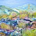Mountains And Marsh by Regina Valluzzi