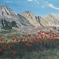 Mountains And Poppies by Betty-Anne McDonald