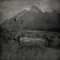 Mountains by Angel Ciesniarska