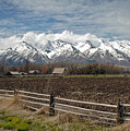 Mountains In Logan Utah by James Steele