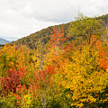 Mountains In The Fall Colors by Terri Morris
