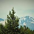 Mountains Of Oregon by Elizah Monai