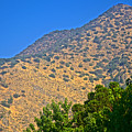 Mountainside From Wealthy Neighborhood Above Santiago-chile by Ruth Hager