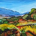 Mountainside Vineyard by Diane Bay