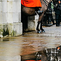 Mounted British Horse Guard Reflection by Alexandre Rotenberg