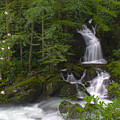 Mouse Creek Falls by Nunweiler Photography