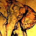 Moving Elephant by Arlene Rabinowitz