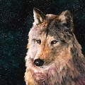 Moving Wolf by Jean Harrison
