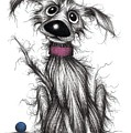 Mr Mucky Paws by Keith Mills