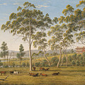 Mr Robinson's House On The Derwent Van Diemen's Land by Celestial Images