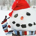 Mr. Snowman by Sandra Cunningham