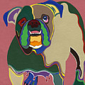 Ms Diva The English Bulldog by Ruby Persson