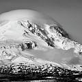 Mt Adams by Albert Seger