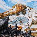 Mt. Hood by Chris Steinken